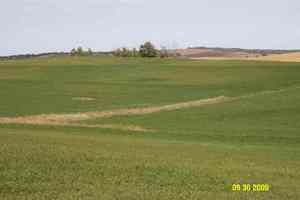 Decatur Nebraska Crop Results