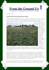 Soil Solutions Newsletters